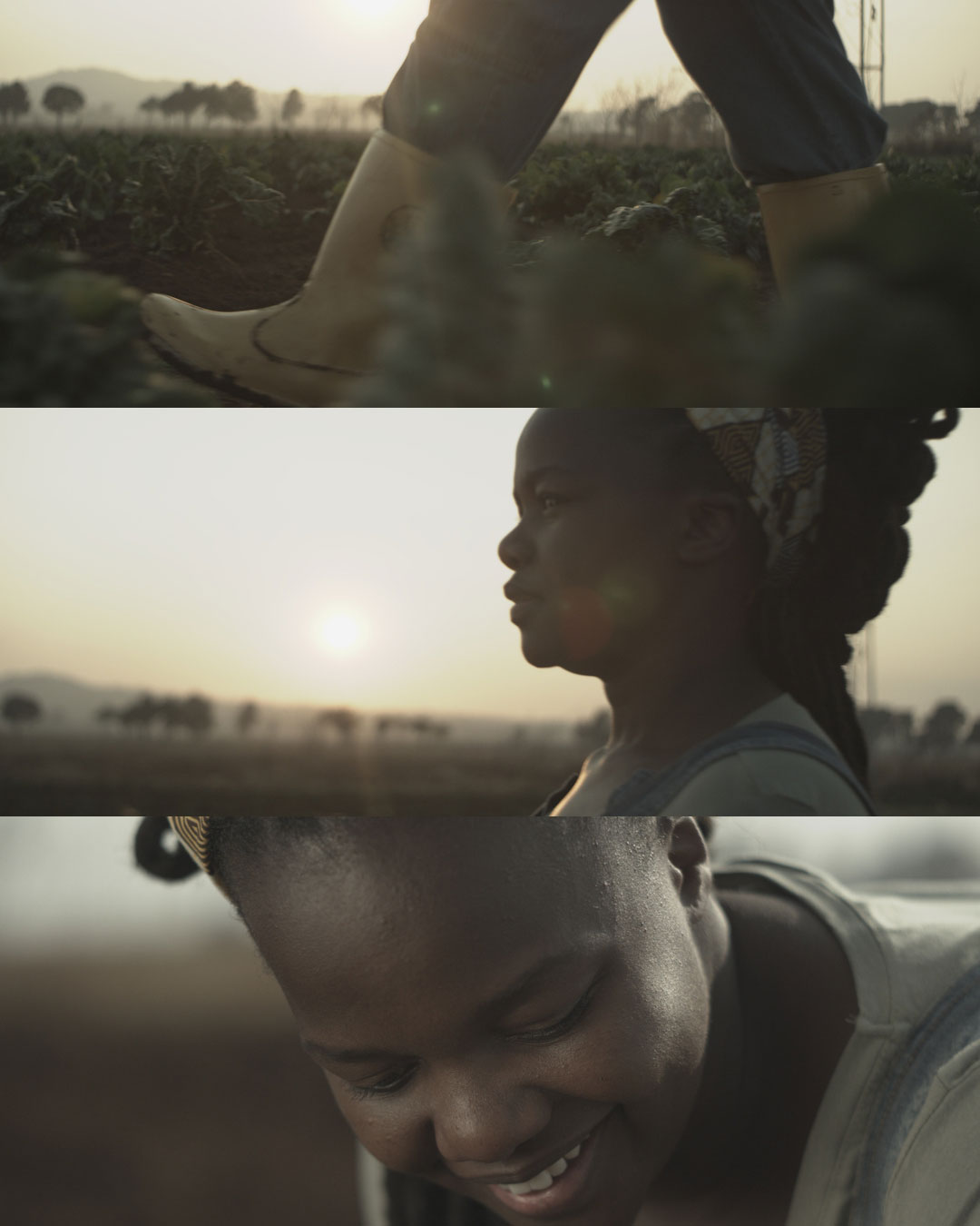 SUNLIGHT-NCUMISA-RAW